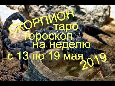 Скорпион.Таро гороскоп на неделю с 13 по 19 мая 2019
