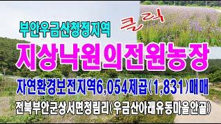 21-25[전북부안지역토지][우금산청림유동마을땅]부안군…