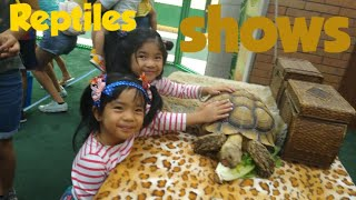 REPTILE SHOW at GT library