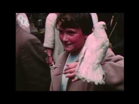 Petticoat Lane (1959) | BFI National Archive