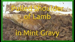 Pulled Shoulder of Lamb in Mint Gravy
