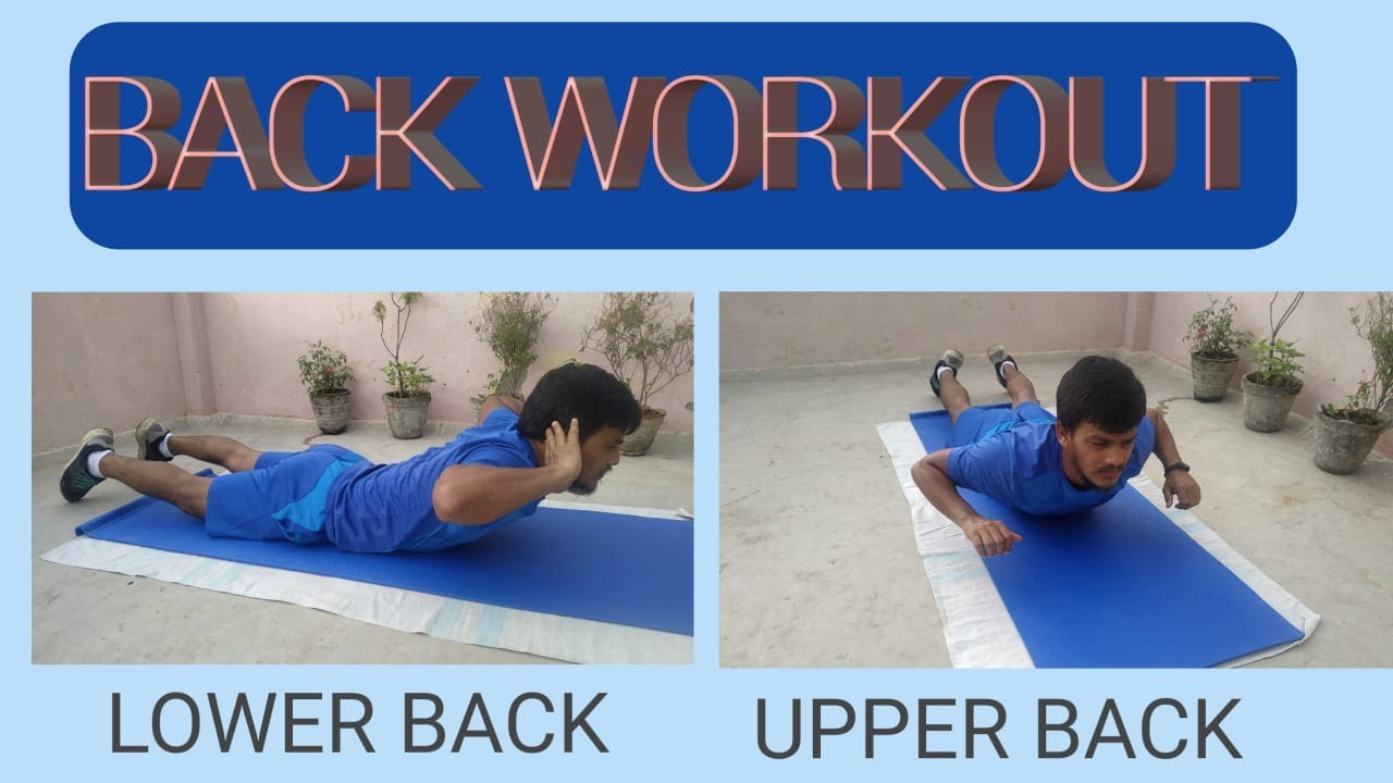 TOP 3 Best Back Workout