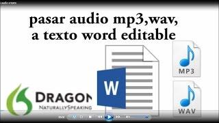 TRANSCRIBIR AUDIO, grabaciones entrevistas a TEXTO automáticamente, pasar de audio mp3 a texto 2019