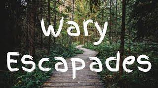 Wary Escapades