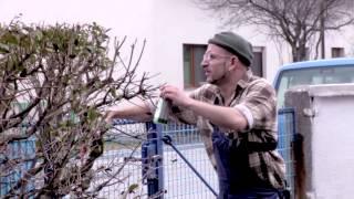 Anton Horvath - Auf der Straße liegt das Geld (Unveröffentlichte Szene)