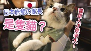 溫泉旅館裡面居然有貓咪館長!萌翻了~~~  東北Vlog  MaoMaoTV