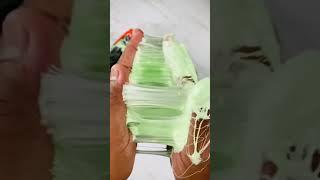 ASMR Satisfying Crushing of Haribo's Frog Gummies Candy
