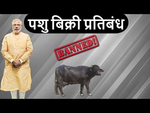 Cattle Slaughter Ban - पशु बिक्री प्रतिबन्ध का पूरा विश्लेषण - Burning issues - Current affairs 2017