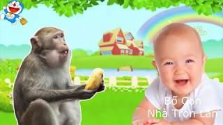 Con Gì Đây - Con Khỉ - Con Mèo - Con Chó -Voi - Nhạc Thiếu Nhi Vui Nhộn Sôi Động - Dạy bé học Online