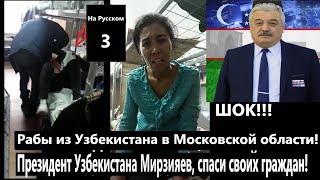 Рабы из Узбекистана в Московской области! Президент Узбекистана Мирзияев, спаси своих граждан!