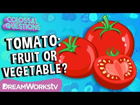 Is a Tomato a Fruit or a Vegetable? | COLOSSAL QUESTIONS