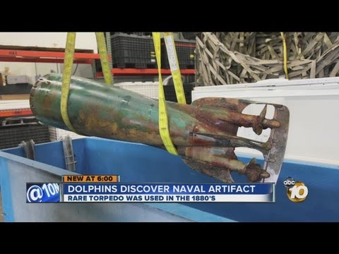 Dolphin With Special Navy Program Discovers Historic Torpedo