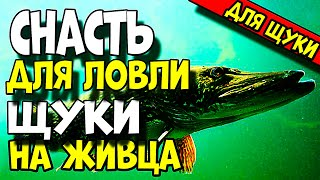 СВЕРХУЛОВИСТАЯ СНАСТЬ для ловли хищника!! ЭТА СНАСТЬ НАЛОВИТ ВАМ ЩУКИ НА РЫБАЛКЕ!