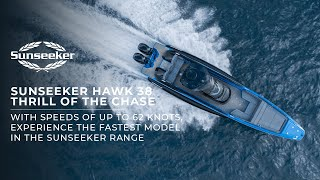 Sunseeker HAWK 38 - Thrill of the Chase