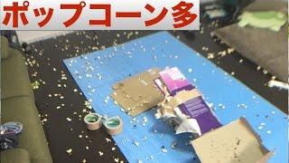 ぶちまけた爆裂トウモロコシ達拾い【掃除】 thumbnail