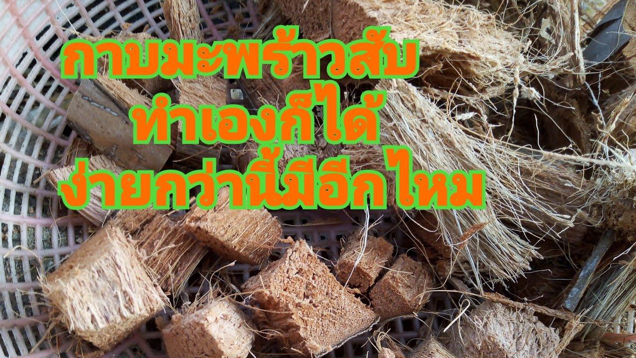 กาบมะพร้าวสับปลูกต้นไม้ทำเองก็ได้ง่ายสุดๆคิดได้ไงเนี่ย ไม่ยอมเสียตังซื้ออีกต่อไปแล้ว ทั้งประหยัด