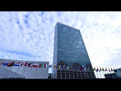 The Point: The United Nations urges the U.S. to pay what it owes thumbnail