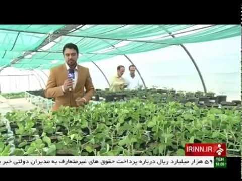 Iran made Agriculture biological poison, Alborz province ساخت سم بيولوژيك كشاورزي استان البرز ايران