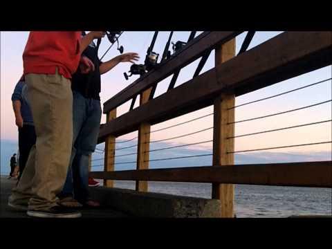 Bull Red Frenzy- Pier Fishing: Saint Simons Island, Georgia