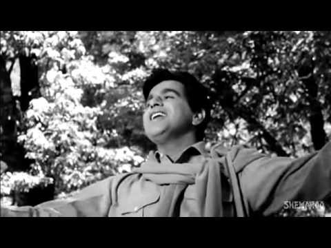 Suhana Safar Aur Ye   Madhumati Songs   Dilip Kumar   Vyjayantimala   Mukesh