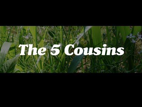 The Five Cousins, a Permaculture Plant Guild by Matt Powers