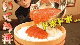 【大食い】イクラ丼 総重量6.5㎏~3.0㎏超のいくらを乗せて~