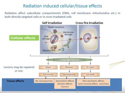 IAEA/ESNM Webinar - Basic Principles of Radionuclide Therapy and Common Clinical Applications