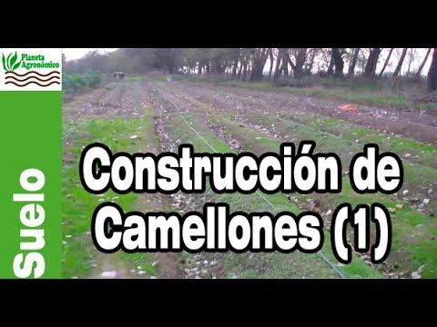 La Necesidad De Construir Camellones Parte 1 2