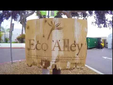 Explore San Diego's Eco Alley in Paradise