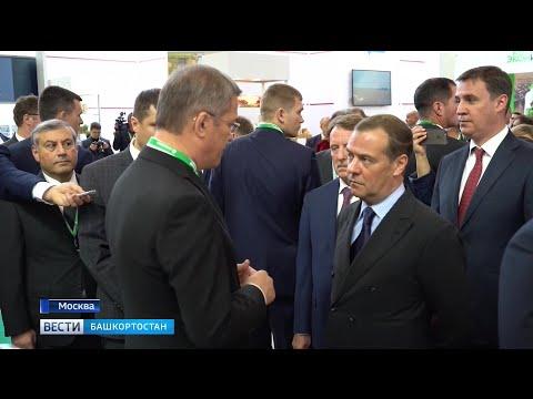 Смотреть фото В Москве сегодня открылась выставка крупнейших достижений в сельском хозяйстве – «Золотая осень» новости россия москва