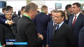 В Москве сегодня открылась выставка крупнейших достижений в сельском хозяйстве – «Золотая осень»