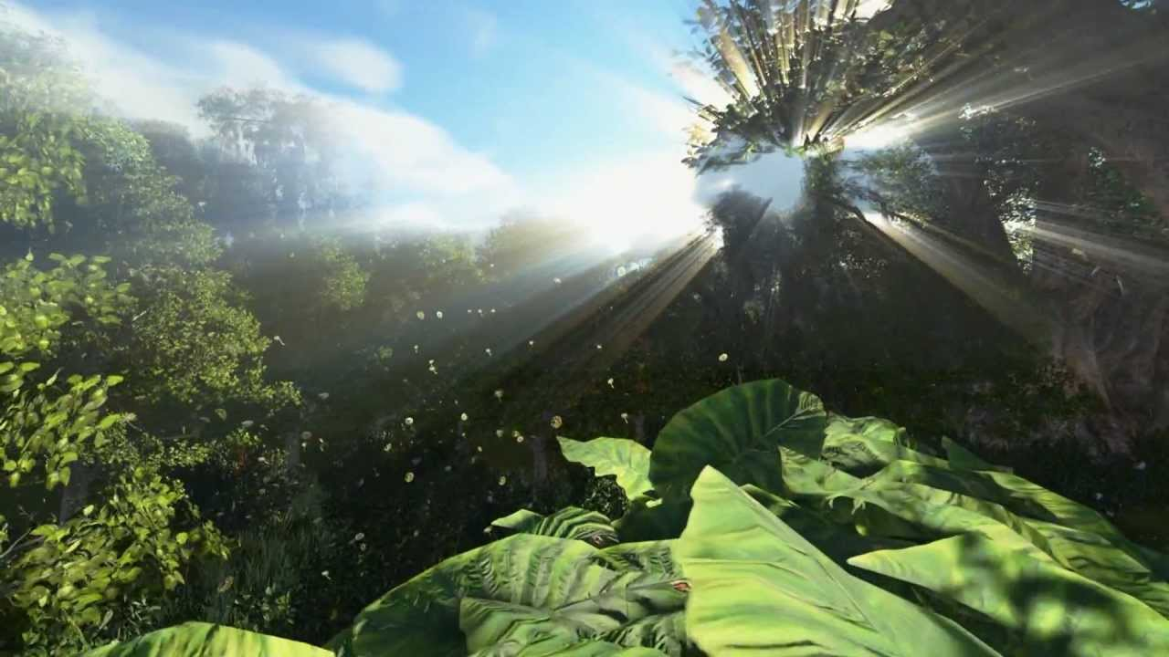 3d Max Wallpaper Texture Floresta 3d Forest Hd God Ray Color Correction Animated