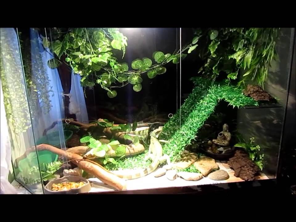 Terrario para reptil youtube for Decoracion para terrarios