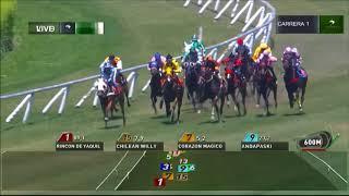 Vidéo de la course PMU PREMIO DREAM'S