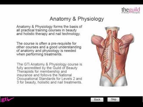 GTi Anatomy & Physiology Free Trial - YouTube