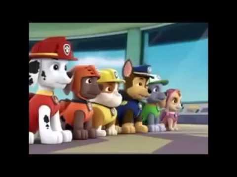 PAW Patrol Patrulla de Cachorros Nuevo Episodios Nueva Temporada ...