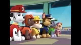 vuclip PAW Patrol Patrulla de Cachorros Nuevo Episodios Nueva Temporada