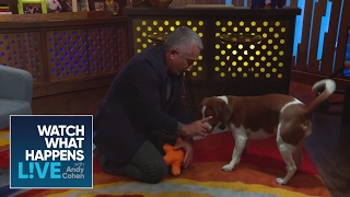 EXCLUSIVE: Cesar Millan Teaches Andy and Wacha New Tricks - WWHL