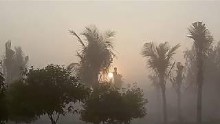 Обыкновенное чудо природы - туман