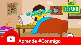 Sésamo: Elmo y Clara te enseñan sus rutinas de la mañana - Aprende #Conmigo
