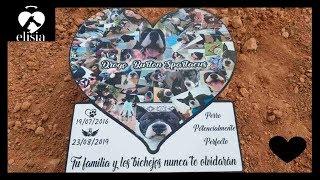 Nos Despedimos De Ellos - Cementerio de Mascotas ( ELISIA )