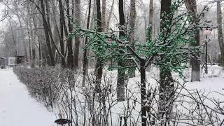 выпал снег Тюмень