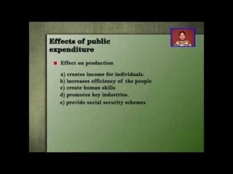 Public Expenditure 1