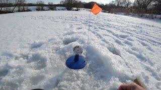 Поймал БЕШЕНУЮ щуку Наконец то потепление Зимняя рыбалка на жерлицы на щуку
