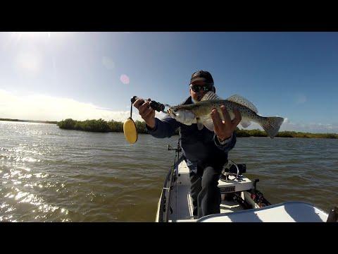 Mosquito Lagoon Fishing Report 12-20-2019