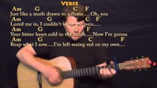 Stitches (SHAWN MENDES) Guitar Cover Lesson with Chords/Lyrics - Capo 1st Fret