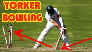 How To Bowl A Perfect Yorker In Cricket !! Tips For Bowling Yorker In Hindi !!