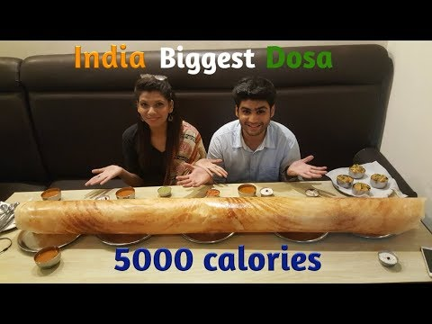 India Biggest Dosa | 1kg 5 feet | India Street Food