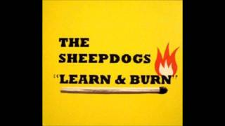 Watch Sheepdogs I Dont Get By video