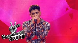 David Ray sings &#39Sub Pielea Mea&#39 - Blind Auditions - The Voice of Armenia - Season 4